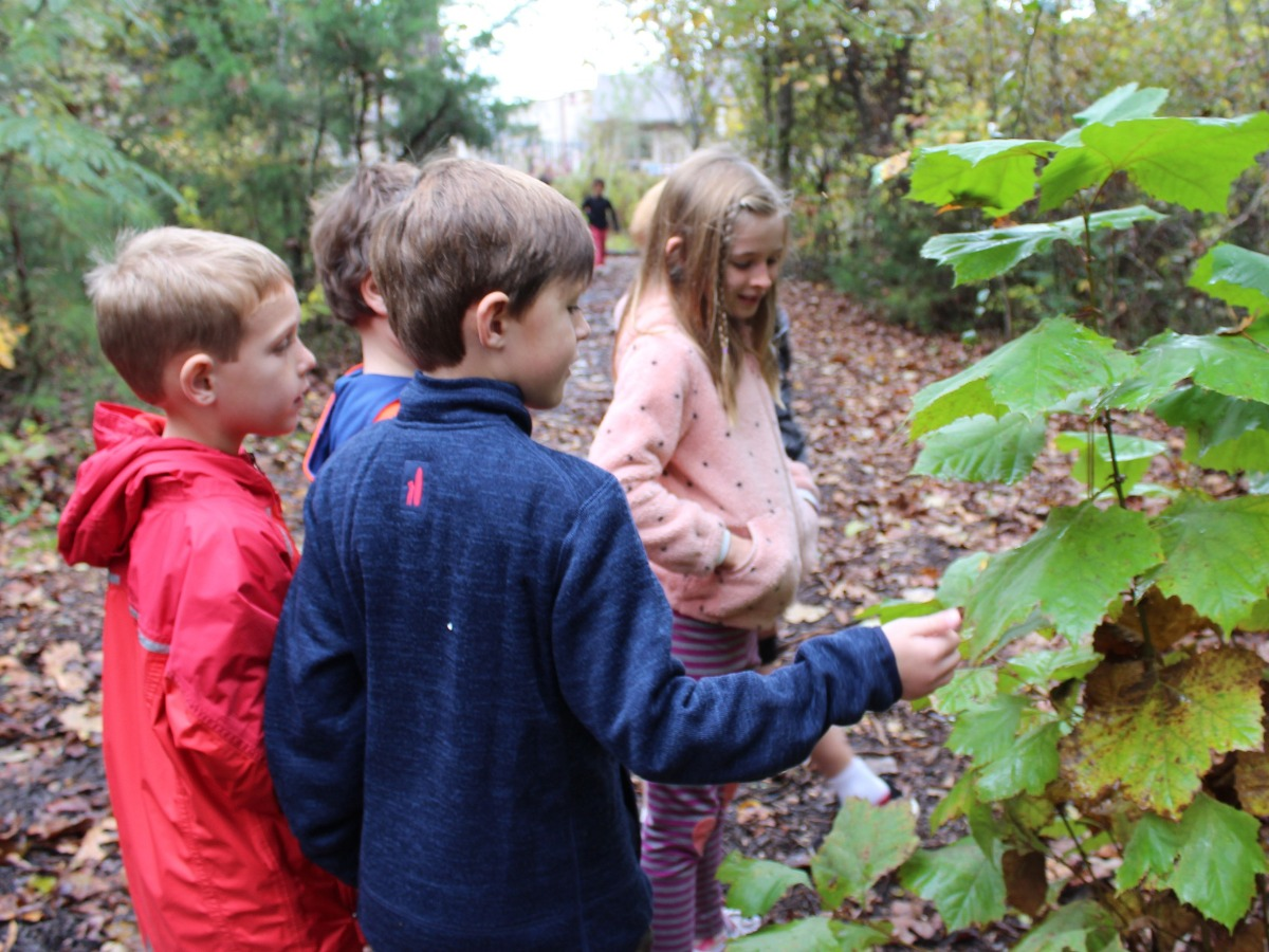 children studying various kinds of plants
